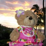 Teddy Bear Diary